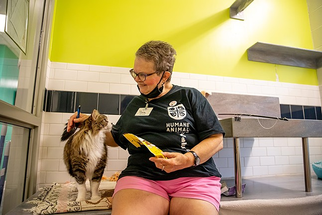 Humane Animal Rescue volunteer Pohla Smith sits with one of the rescue cats. - CP PHOTO: KAYCEE ORWIG