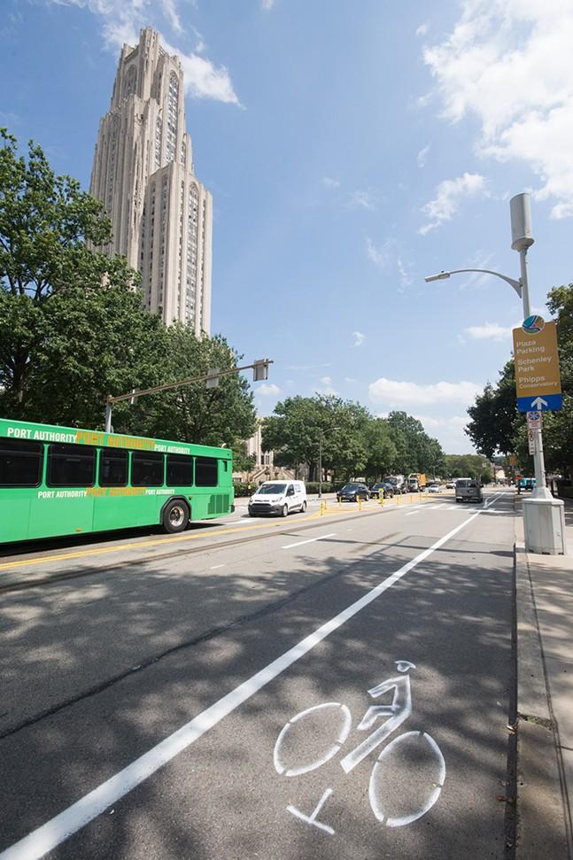 New bike lane on Bigelow Boulevard - CP PHOTO BY JAKE MYSLIWCZYK