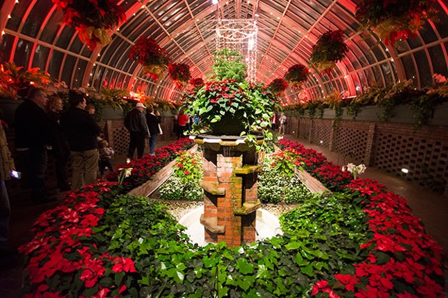Holiday Magic! Winter Flower Show and Light Garden - CP PHOTOS BY JAKE MYSLIWCZYK