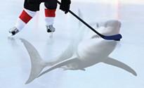 NHL hockey is fun outdoors, but hockey over a shark tank kicks it up a notch