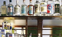 Needle & Pin brings dozens of gins to Dormont