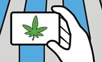 How to get a Pennsylvania medical-marijuana card