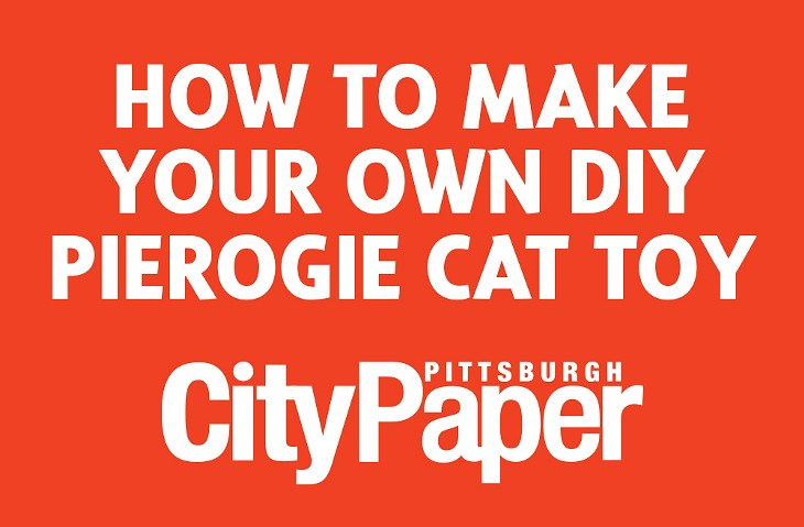 How to make your own pierogie cat toy
