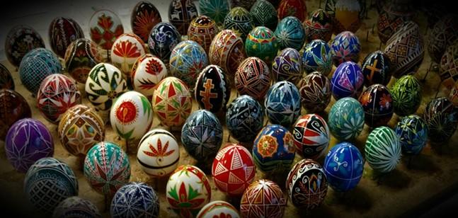 egg_photo_5.jpg