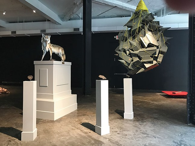 "Shaun Slifer's ""Shapeshifter, canis latrans"" (foreground, left) and Jasen Bernthisel's ""This Is Revolting"" (foreground, right)"