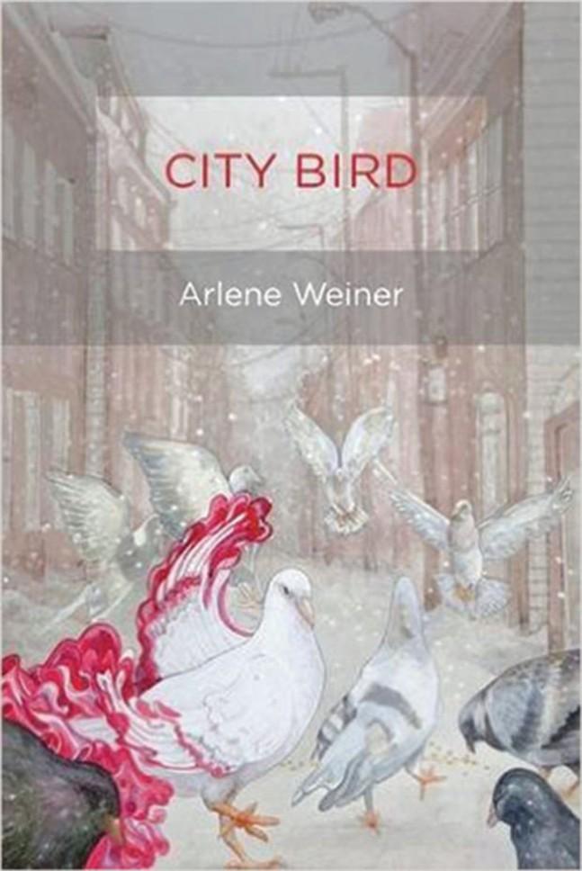 city-bird-book-review.jpg