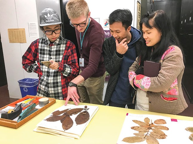 Members of the Art Labor collective study coffee herbarium specimens at Carnegie Museum of National History with Mason Heberling, postdoctoral research fellow
