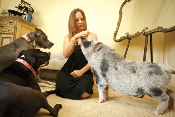 Heather Long with her pot-bellied pig and two rescue pit bulls - PHOTO BY HEATHER MULL