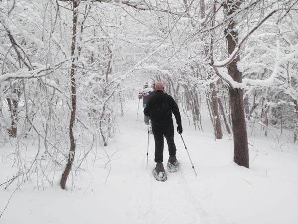 Snowshoe hikes with Venture Outdoors