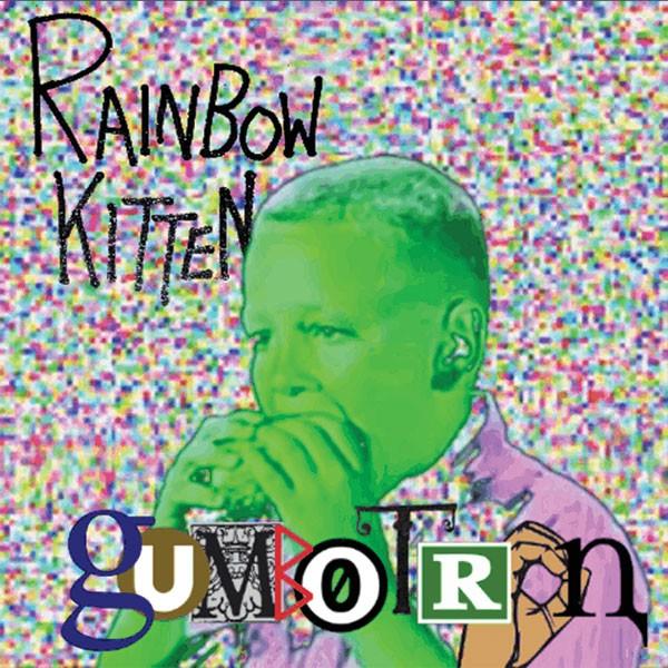 music-feature-rainbow-kitten.jpg
