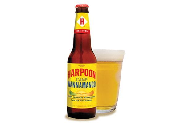 harpoon-camp-wannamango.jpg