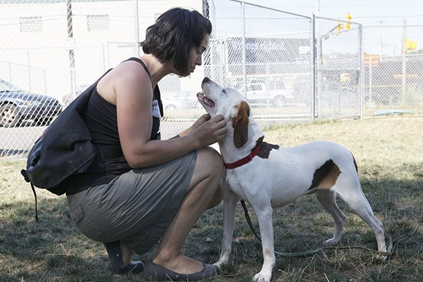 A dog-walking volunteer at Animal Rescue League - CP FILE PHOTO BY HEATHER MULL