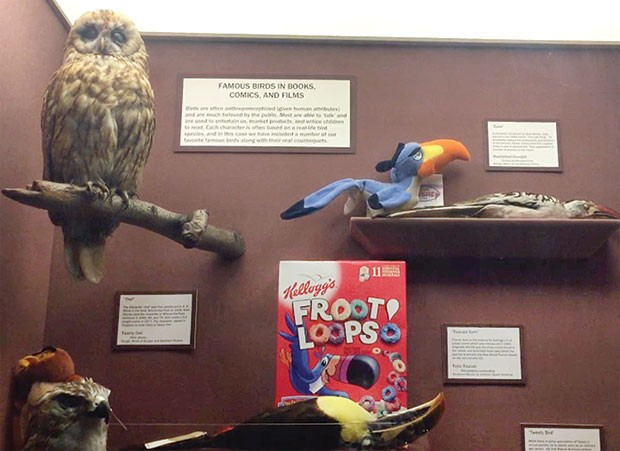 Toucan Sam and other fowl in the Hall of Birds