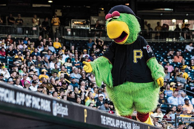 The Pirate Parrot - CP FILE PHOTO