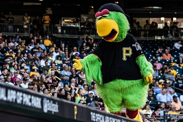 The Pirate Parrot at a 2017 Pirates game - CP PHOTO BY LUKE THOR TRAVIS