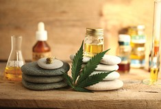 Does CBD oil work?