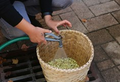 The Iroquois White Corn Project and Conflict Kitchen work together to bring light to indigenous peoples' cuisine and history.