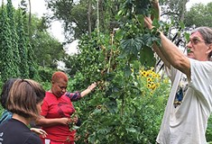 A renowned expert, a local experiment in permaculture