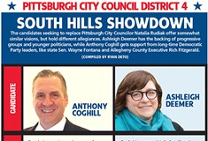 Pittsburgh City Council District 4