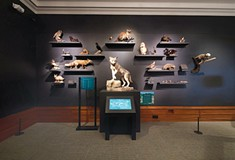 <i>We Are Nature: Living in the Anthropocene</i> at the Carnegie Museum of Natural History
