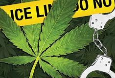 Despite decriminalization, Pittsburgh's marijuana-possession arrests are on the rise