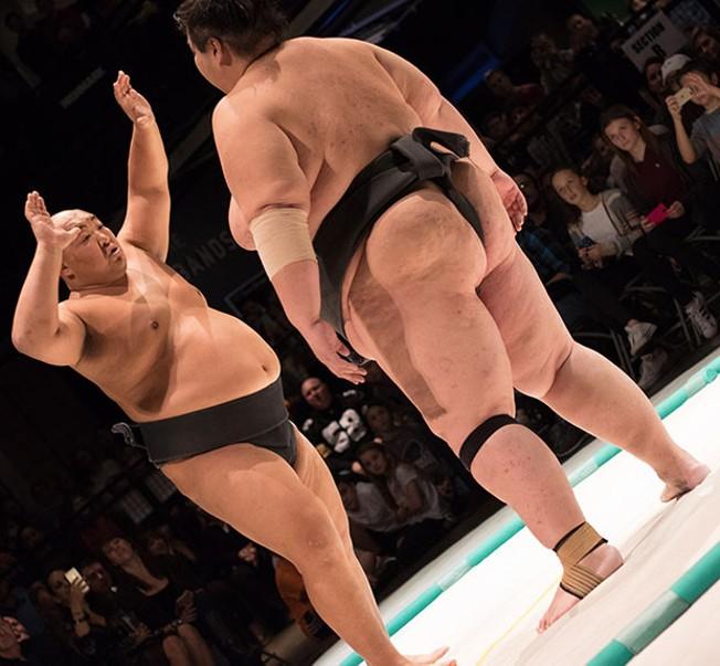 twink-sumo-wrestler-photos