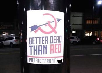 Dozens of white nationalism fliers hung in Pittsburgh's South Hills on Election Day