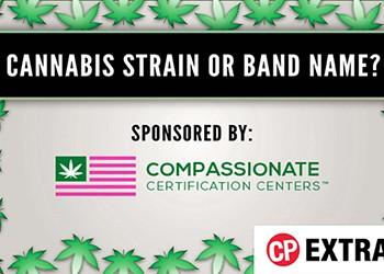 Cannabis Strain or Band Name?