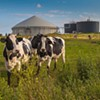 Biogas needs real consideration as a truly clean alternative to natural gas