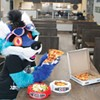Furry friends: Pittsburgh restaurants welcome Anthrocon furries with specials, signs and long straws