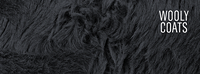 5db9406c_wooly.png