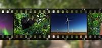 fc6ffee2_film.jpg