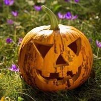 7dea3e30_halloween_happenings_3_.jpg