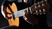 cee67556_acoustic_guitar.jpg
