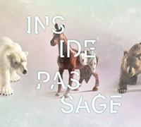 26d3f4f3_inside-passage_websquare_-_copy.jpg