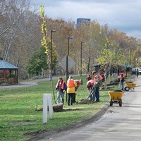 TreeVitalize kicks off spring planting season, calls for volunteers