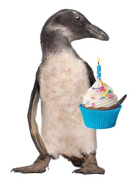 wkids_penguin.jpg