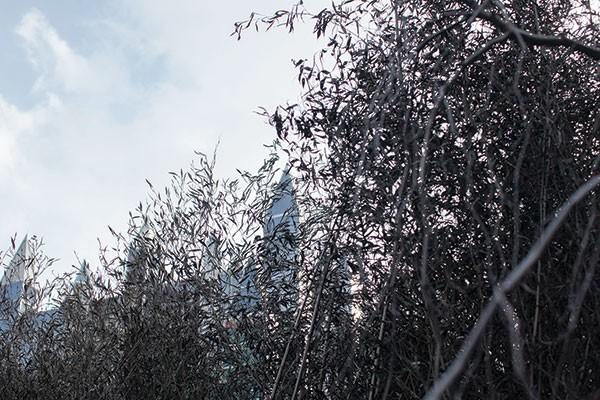 Winter Landscape Cradling Bits of Sparkle<