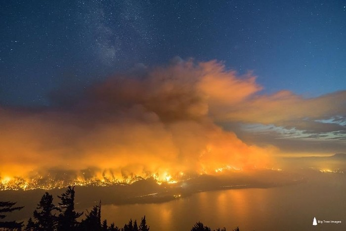 Big_Tree_Images_Eagle_Creek_Fire.jpg