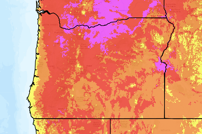 A map of Oregon with yellow, orange, red, and purple sections indicating heat. Most of the map is red with some purple around Portland, indicating extreme heat.