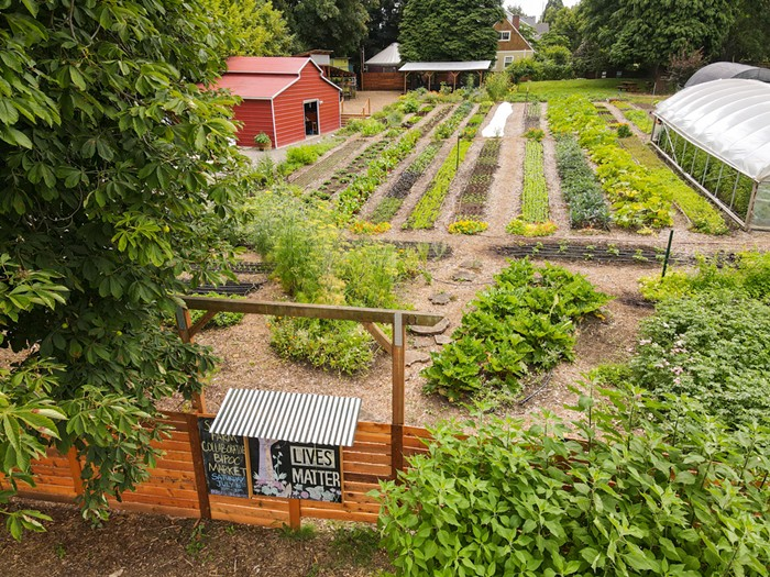 Faced With Heat, Smoke, and Ice, Portland's Urban Farmers Are Resilient to Climate Change
