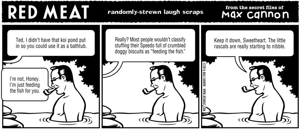 randomly-strewn laugh scraps