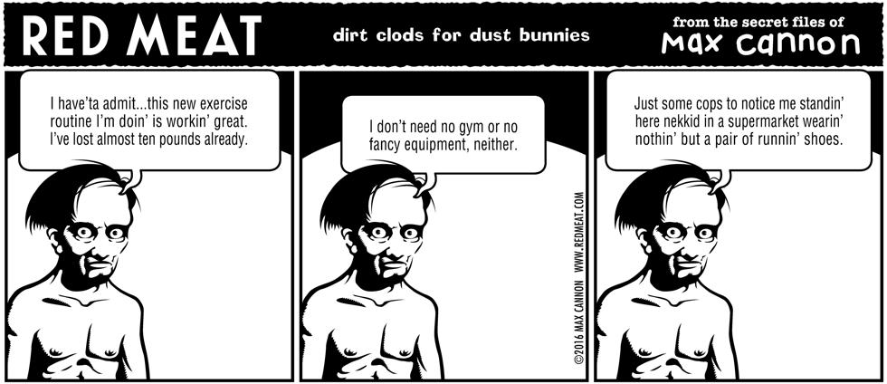 dirt clods for dust bunnies