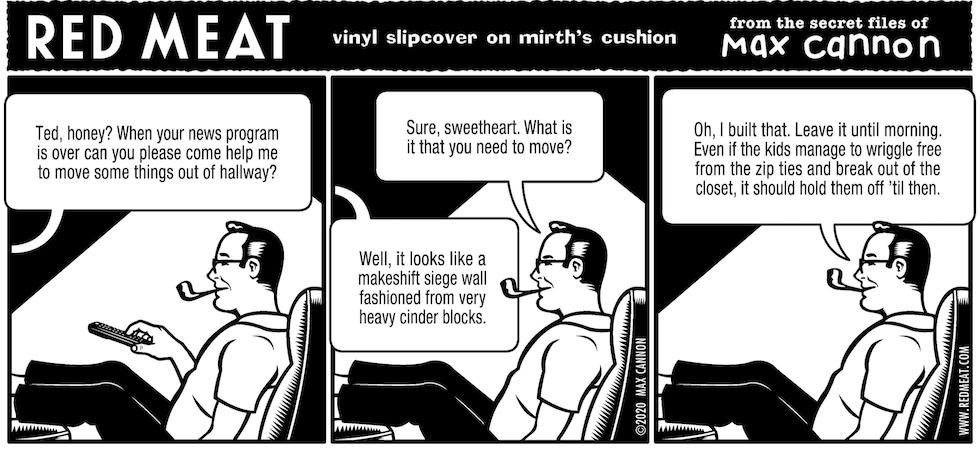 vinyl slipcover on mirth's cushion
