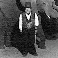 Wait Elephant