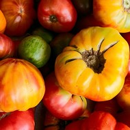 """""""The Good, the Big and the Ugly"""" Tomato Contest Invites You to Strut Your Tomato Stuff"""