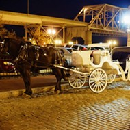 Should Horse-Drawn Carriages Be Banned in Downtown St. Louis? Petition Says Yes
