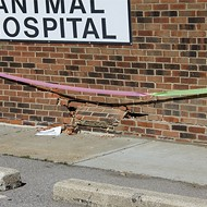 Jefferson Animal Hospital Closed After Dog Inadvertently Causes Car to Crash Into It