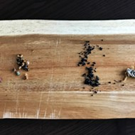 For Dinner: 10 Courses of Edible Insects, From Chef Logan Ely