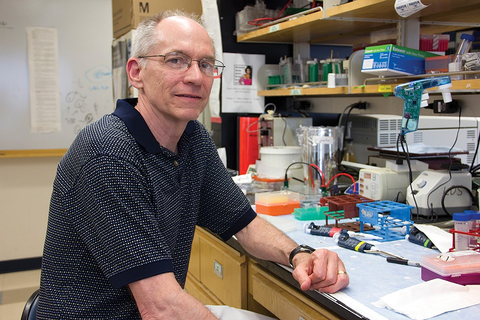 Since 1991, Washington University scientist David Sibley has focused his lab on one subject: the Toxo parasite. - DANNY WICENTOWSKI